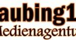 LOGO-Straubing1_klein